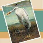 Cig-Egret