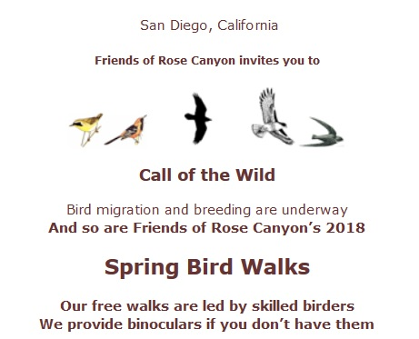 Bird walk information