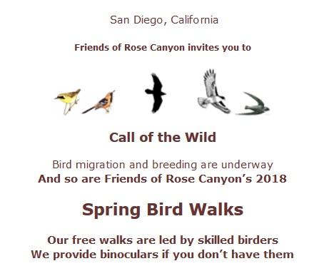 Bird walk information