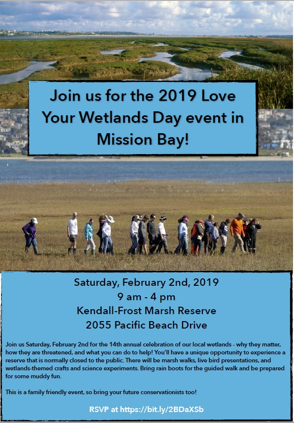 Love Your Wetlands Day Flyer