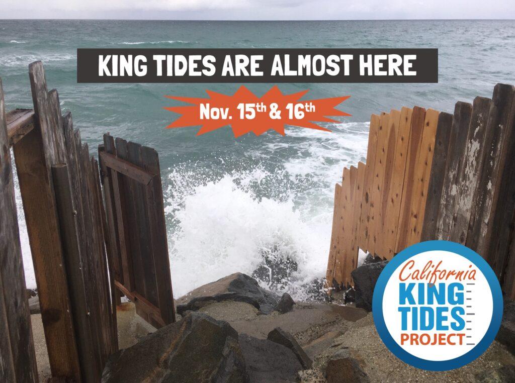 King tides poster