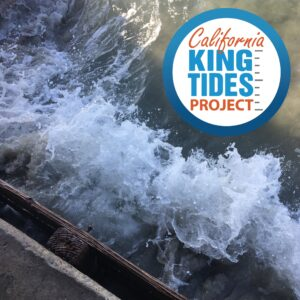 California King Tides Project Graphic